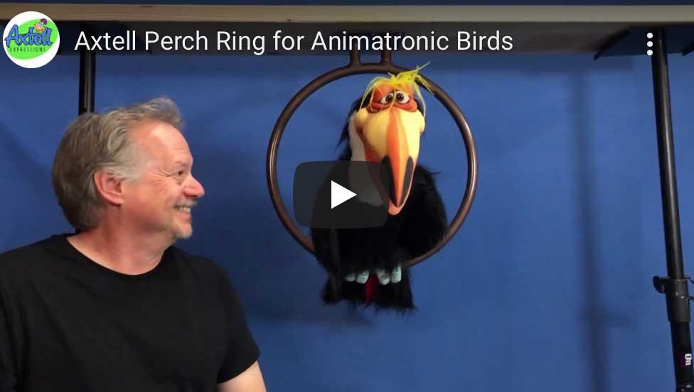 Bird Perch