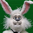 Ringo Rabbit