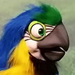 Mega Macaw