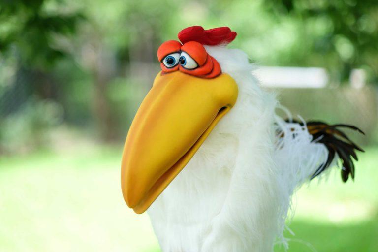 Cluck Chicken Shawn Patrello