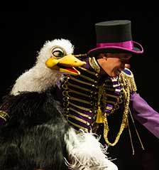 Ostrich Berty Balder