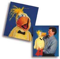 Dazzle Duck Puppet