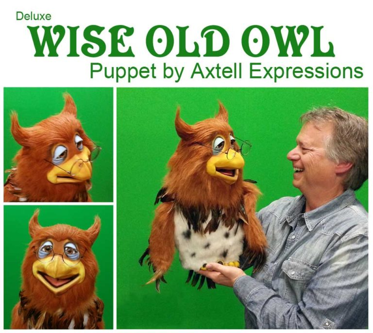 Wise Old Owl Puppet 2