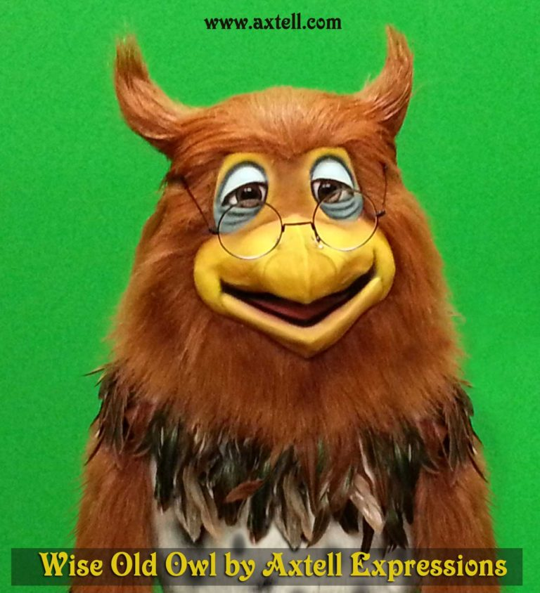 Wise Old Owl Puppet