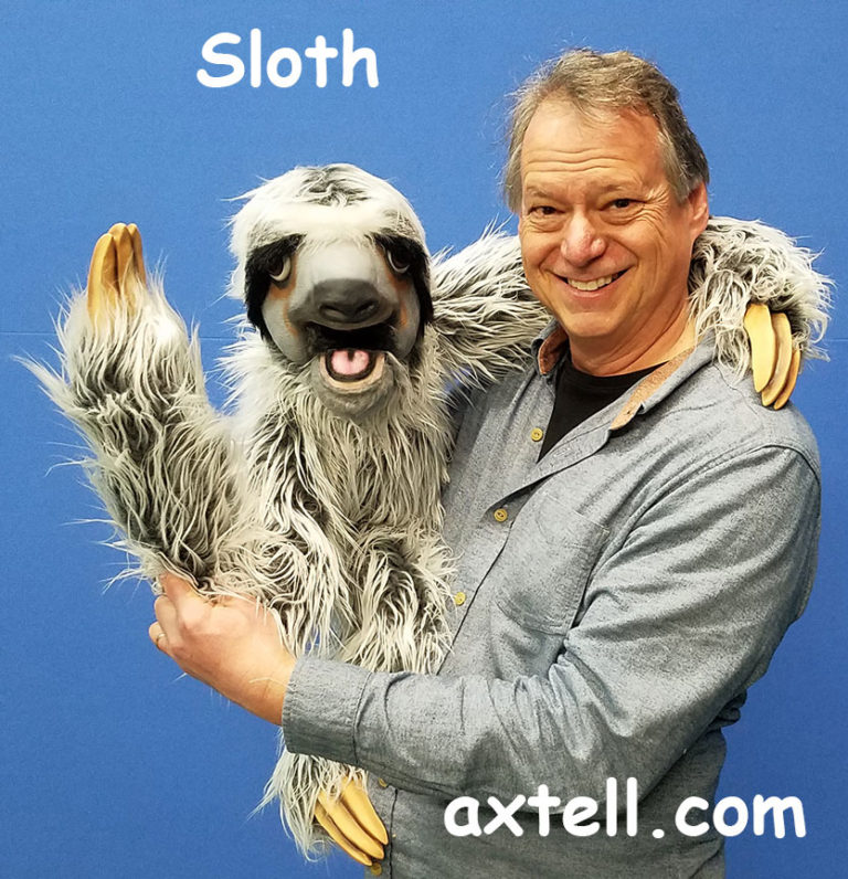 Sloth Puppet Wave
