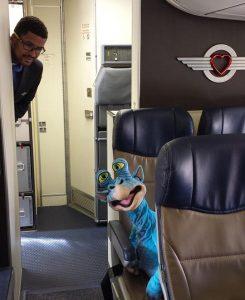 Aliens on a plane