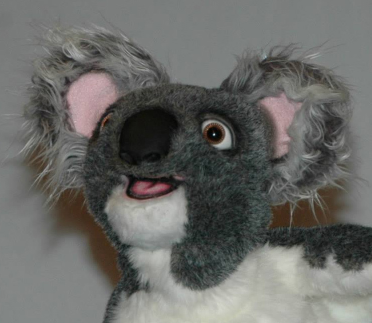 Koala Puppet Close Up