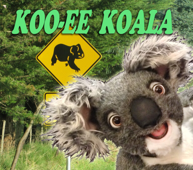 Koala Puppet by Axtell Expressions