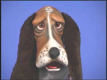 Bogart the Basset Hound Puppet