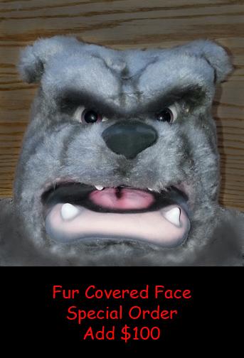 Bulldog with Fur Face