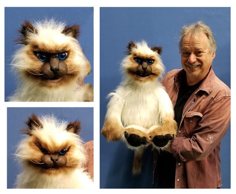 Himalayan Cat Puppet