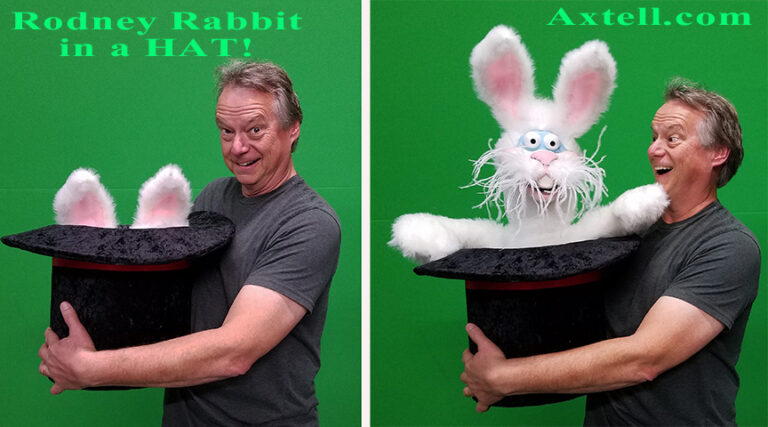 Rodney Rabbit in a Hat by Axtell Expressions