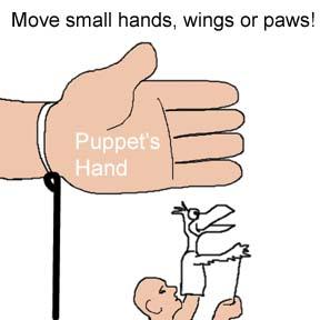 Wire Wrist Rod Option
