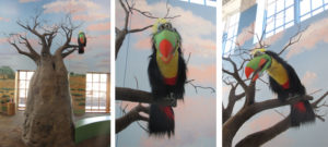 South Dakota Children's Museum installation with Toucan sitting on the limb of a Baobab tree!
