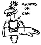 Bird Arm Illusion