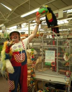 Alan Horne using his Magic Toucan an Dodo to promote cages at a Garden Center in England