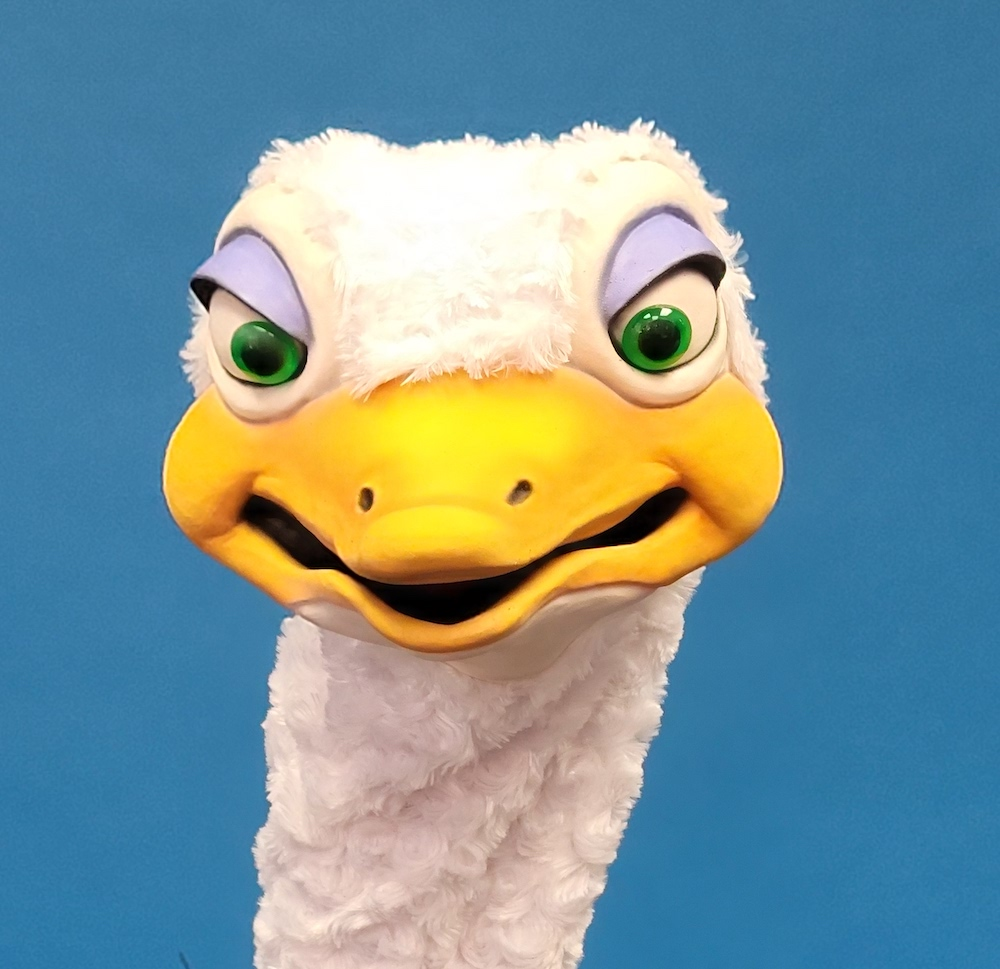 Ostrich Head Straight