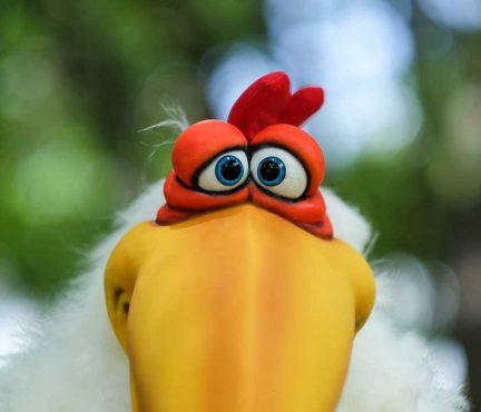 Cluck Chicken Eyes Shawn Patrello