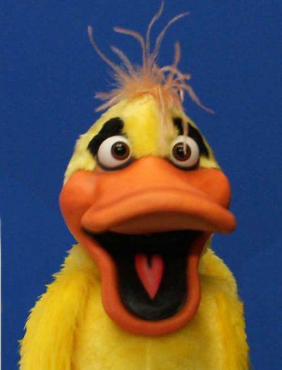 Chuck Duck